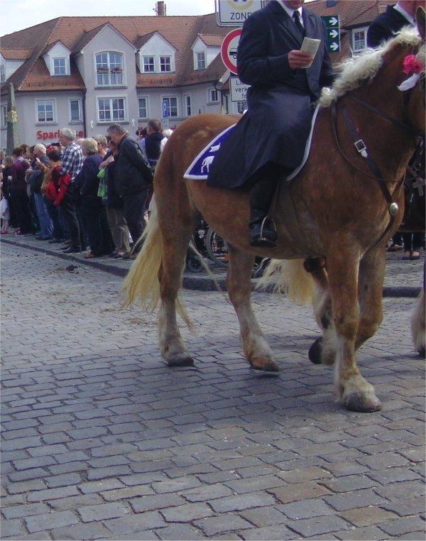 Kopfloser Reiter auf Kaltblüter