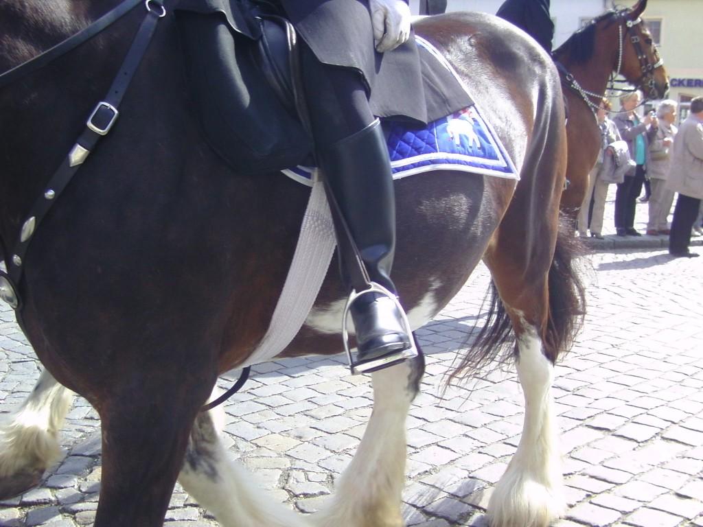 Pferd und Reiter - beide ohne Kopf